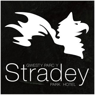 Stradey park weddings